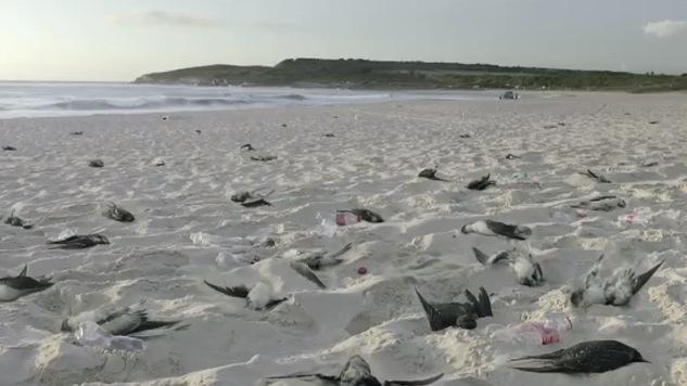 EBDLN-CocaCola-Greenpeace-plastic-2