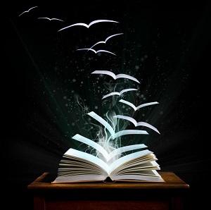 libros-voladores