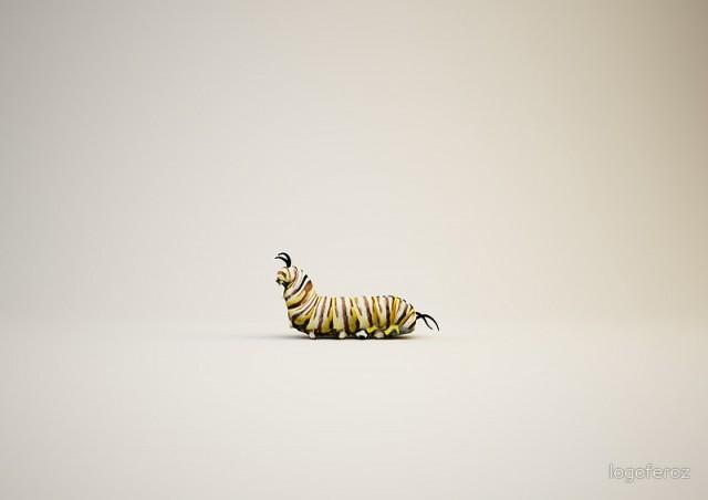 EBDLN_LogoFeroz-Animals-3