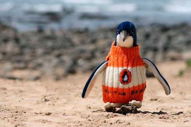 EBDLN-oldest-man-australia-knits-penguin-sweaters-4
