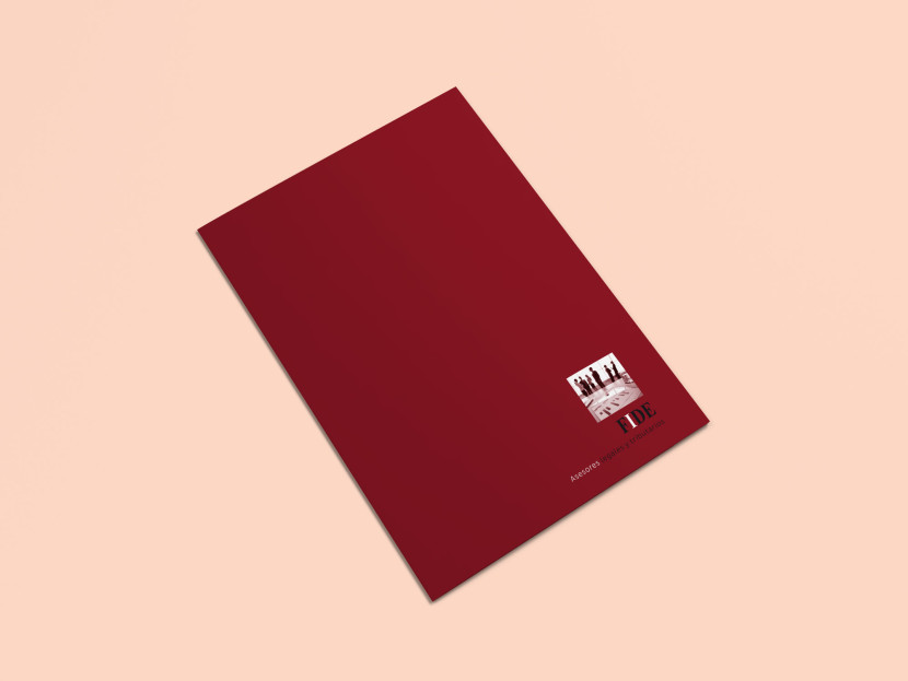 FIDE-Brochure-Portada-1.jpg
