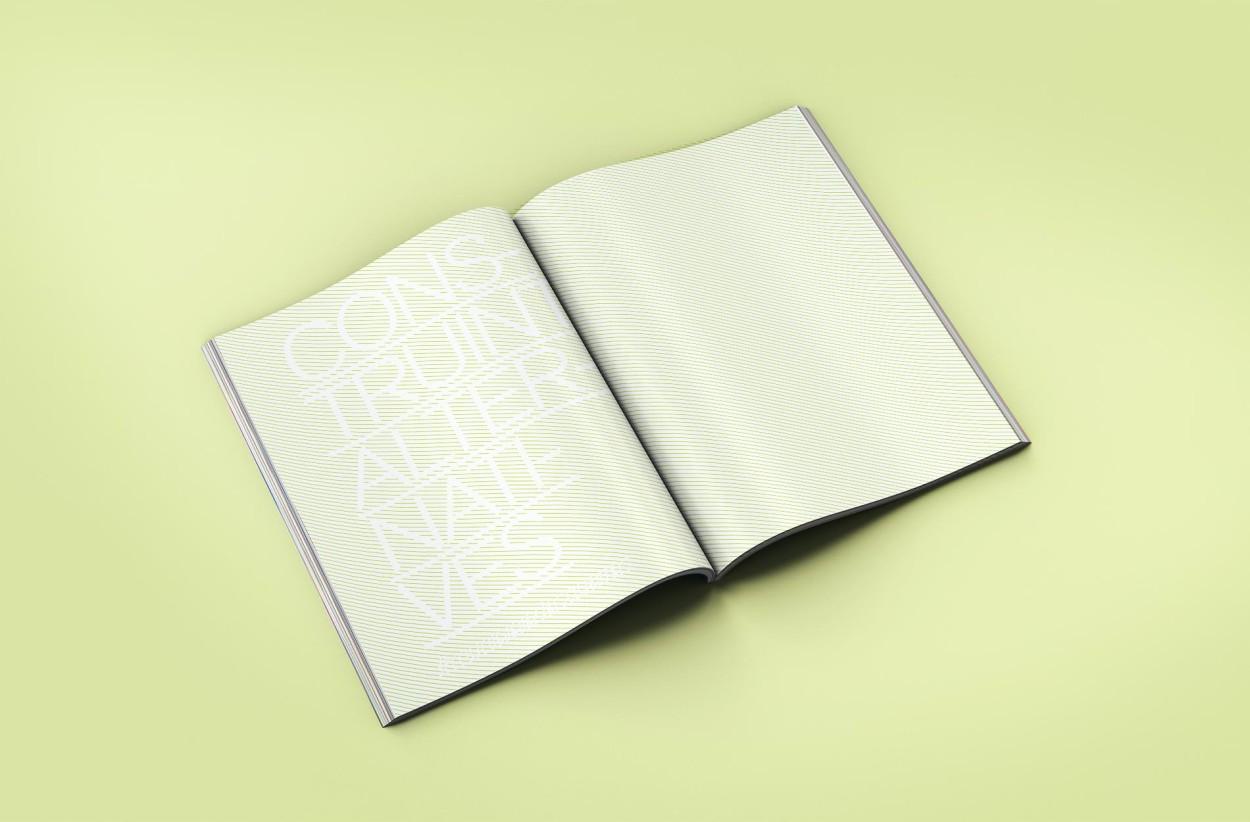 lanegreta-ICV-Book-ALTERNATIVES-2.jpg