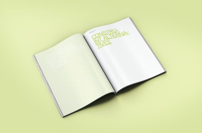 lanegreta-ICV-Book-ALTERNATIVES-3.jpg