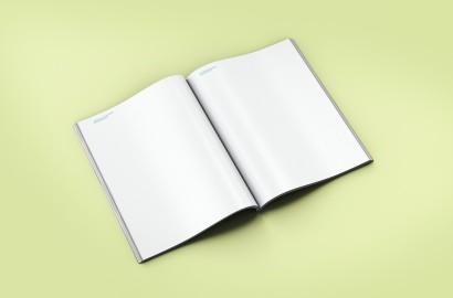 lanegreta-ICV-Book-ALTERNATIVES-7.jpg