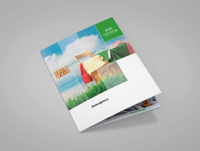 laNegreta-Quimidroga-Brochure-Detergency-THUMB.jpg